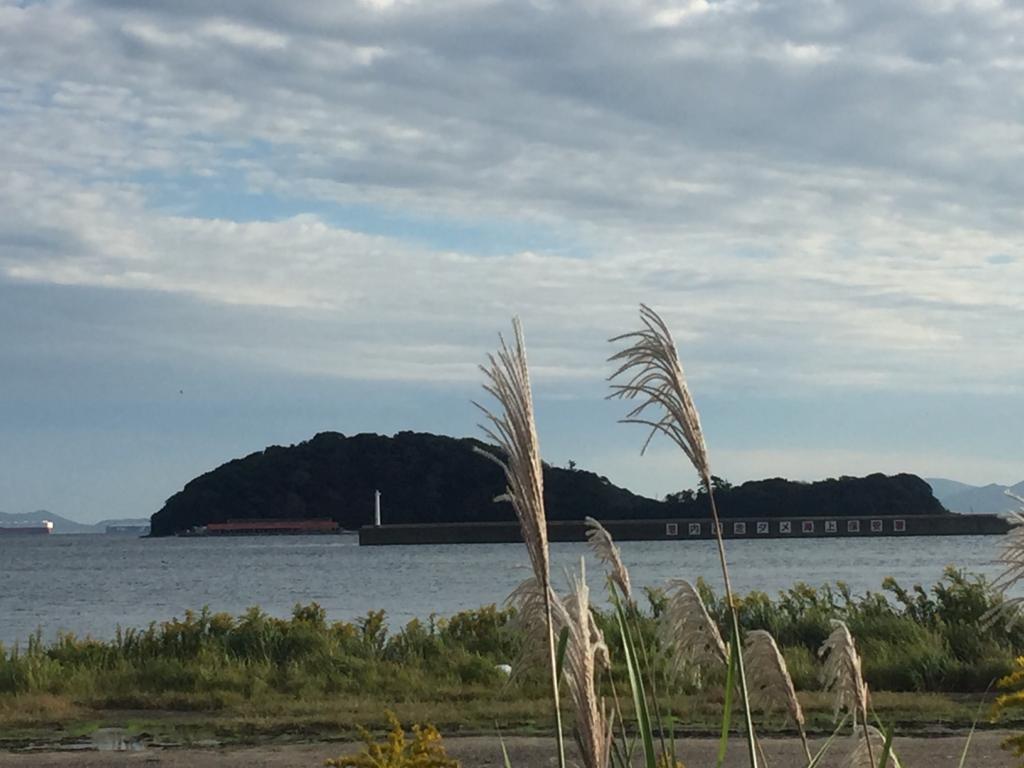 海とススキの画像です。